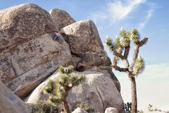 Rock Climbing Photo: Morning solo. Photo by Jessica Olson