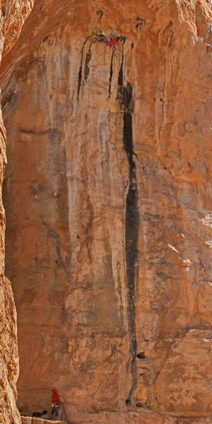 Rock Climbing Photo: Ed Strang makes it to the chains Bronner (5.14)