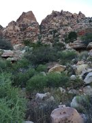 Rock Climbing Photo: 1 - the Olive Oil gully is the vegetated gully in ...