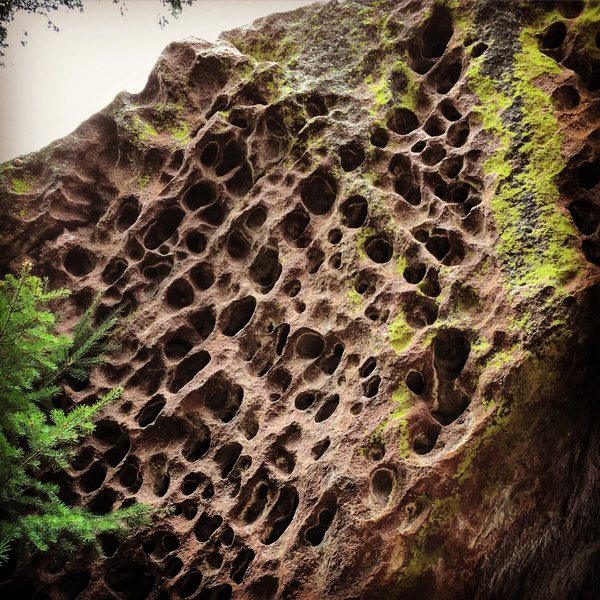 Rock Climbing Photo: Wholly hueco