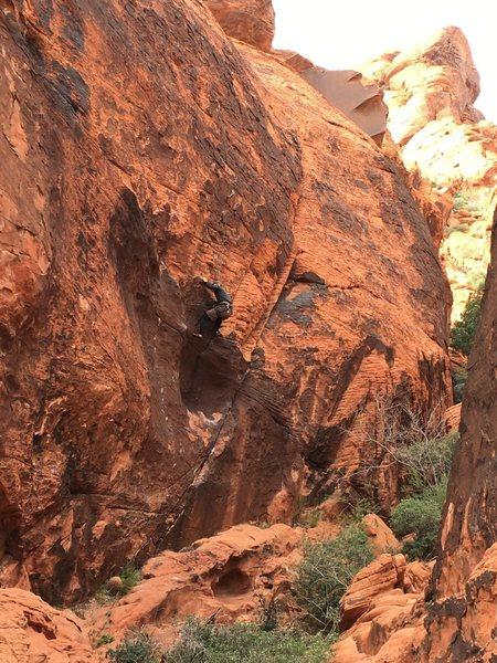 Rock Climbing Photo: WOLGANG 2016