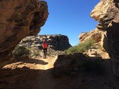 Rock Climbing Photo: Zen Wall Approach
