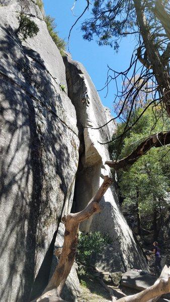 Rock Climbing Photo: Energizer 11b!!!