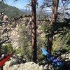 Black Hills,SD<br> Hammock Resting