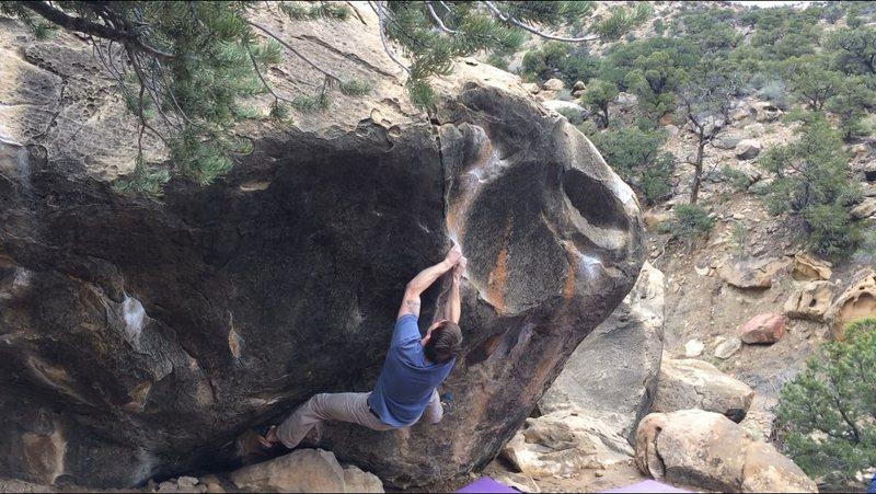 A man sized boy, on a boy sized boulder.