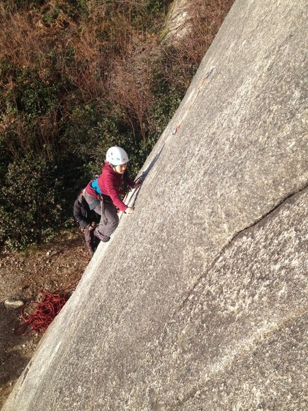 Rock Climbing Photo: pink panther 11c, squamish