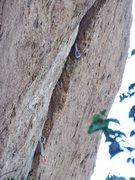 Rock Climbing Photo: 5.12 Crack sewn up with gear.