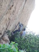 Rock Climbing Photo: Aid practice on the 5.12 Crack.