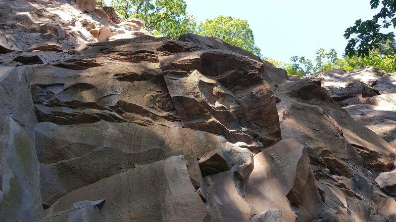 Bottom of Jungle Wall