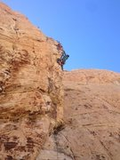 Rock Climbing Photo: Red rocks, some .10d at wake up wall