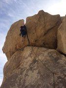Rock Climbing Photo: Geronimo j-tree