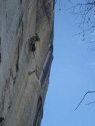 Rock Climbing Photo: Ryan Little at the P-1 anchors