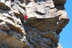 Peter Hoang on Yellow Wall