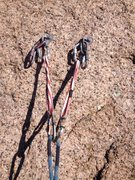 Rock Climbing Photo: Irish Red anchors.