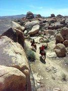 Rock Climbing Photo: Riders on horseback, The Cemetery