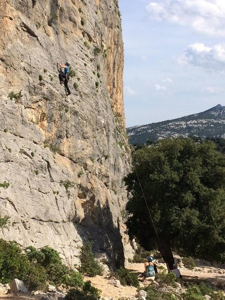 Climbing toprope in the vicinity of Cala Gorone, Sardinia, Italy.