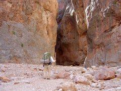 Rock Climbing Photo: Jump up canyon, G.C.N.P.