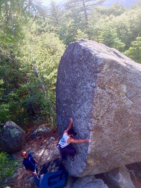 Rock Climbing Photo: Hidden BP in the forest!!