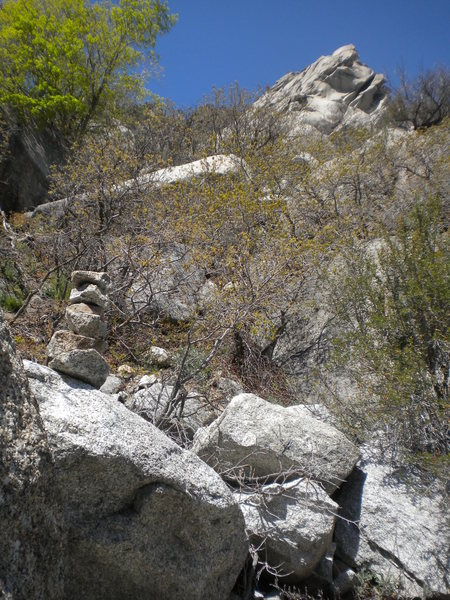 Though schwacky, the approach is marked by cairns along the way and has tunnels of access through the scrub oak
