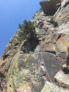 Rock Climbing Photo: Directly above Alex's head are two crack systems t...