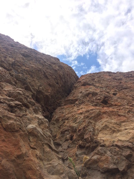 Looking up the crack.