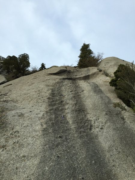 Looking up Gumbyland from the belay ledge.