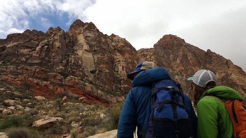 Black Velvet Canyon Red Rock