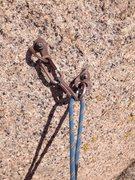 Rock Climbing Photo: Murphy's Law anchor