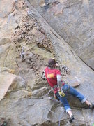 Rock Climbing Photo: Joe beginning the honeycomb section.