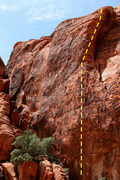 Rock Climbing Photo: Wildspleef's Wildride climbs the wall to the pilla...