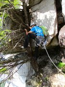 Rock Climbing Photo: John climbing the tree at the beginning of the fin...
