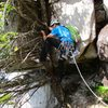 John climbing the tree at the beginning of the final pitch (the Seal Flake pitch).