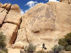 Rock Climbing Photo: Pinky Lee