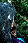 Rock Climbing Photo: Whale Boulder,'The Eye' V9