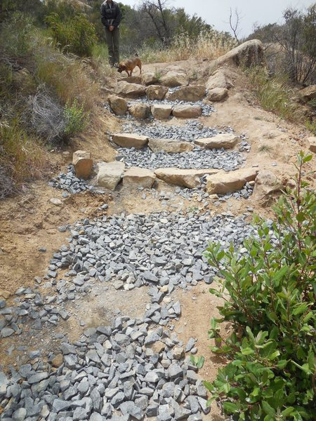 Newly completed trail work on the approach to Saddle Peak.