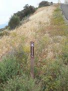 Rock Climbing Photo: Cruising on the Backbone Trail to Saddle Peak.