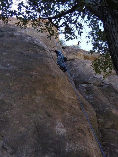 Rock Climbing Photo: Sport Climbing at Queen Creek