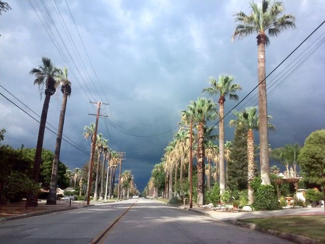 Storm clouds and palms, Inland Empire