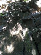 Rock Climbing Photo: Opus