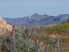 Rock Climbing Photo: Whitestone Mtn across the Okanogan Valley form the...