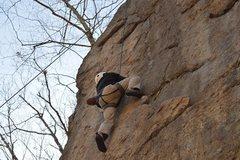 Rock Climbing Photo: Withywindle Wall