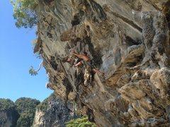 Rock Climbing Photo: On the Crux!
