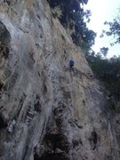 Rock Climbing Photo: Looking up at chains,  Garret at the top cleaning ...