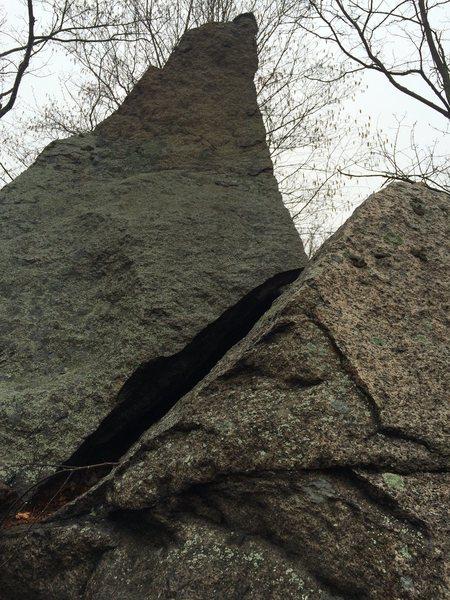 Rock Climbing Photo: Spring Pond Woods.