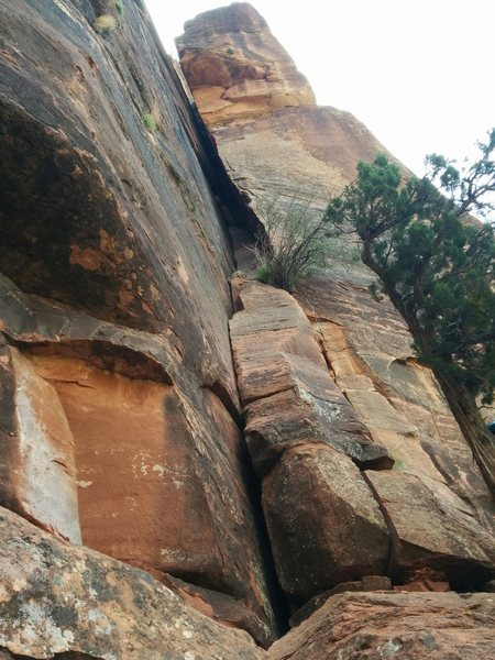 The start of the first pitch of Weeping Rock Chimney's, Left Side. Start in the corner and move into the chimney. Excellent finger and hand jams all the way up. A bolted anchor is on the right face of the chimney near a large chockstone (not visible in the picture).