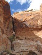 Rock Climbing Photo: Tony B. leading the FA of Scheherazade (5.9) at Ev...