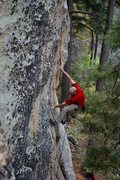 Rock Climbing Photo: Christian Rodenbeck on the beautiful War of the Wo...