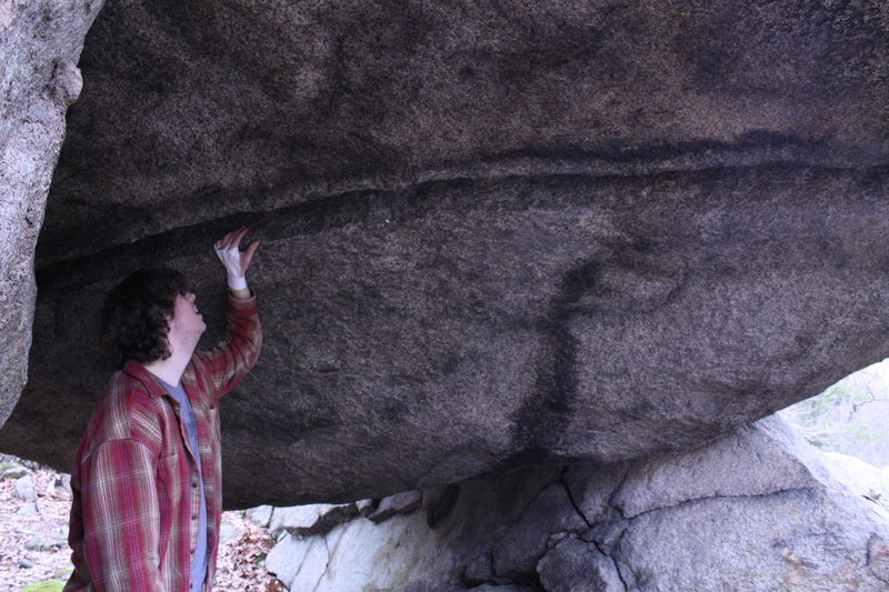 Rock Climbing Photo: Dan eyeing the off-width.