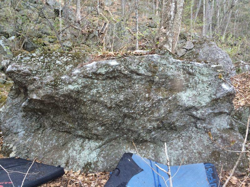 The mushroom Boulder