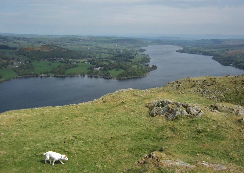 Looking north from the summit of Hallin Fell up the north end  of Ullswater Lake